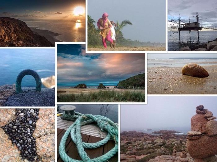 Collage EFCA Photo Contest.jpg